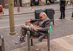 "Hechando la siesta • <a style=""font-size:0.8em;"" href=""http://www.flickr.com/photos/145253901@N04/37643252745/"" target=""_blank"">View on Flickr</a>"