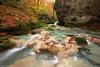 Autumnal paradise (Hector Prada) Tags: otoño rio hojas cascada agua musgo rocas autumn river leaves waterfall water moss rocks paradise navarra