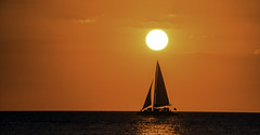 Sailing Under the Setting Sun (C. P. Ewing) Tags: sailing boat boats ocean gulf sea sky sunset sun landscape pandscapes beautiful pretty orange water outdoor nature all everything reflection shadow night lowlight light cloud clouds seascape lights colorful