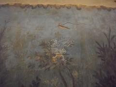 Gli affreschi della villa di Livia a Palzzo Massimo _09
