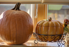 Pumpkins in Window (Nikon Stu) Tags: pumpkins thanksgiving nikon hdr orange window display