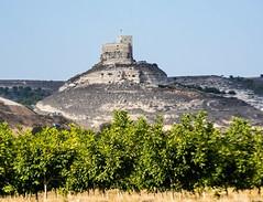 Castillo de Curiel (cvielba) Tags: duero valladolid castillo curiel rio castle geology