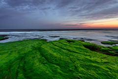 Coquina Sunset (Matt Creighton) Tags: sunset kurebeach northcarolina ocean oceanscape atlanticocean atlantic coquina nikond750 nikon tamron1530 seascape explore