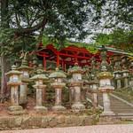 Kasuga Taisha, Nara thumbnail