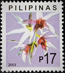 Epigeneium lyonii (Sylvio-Orquídeas) Tags: orquídeas orchids orchidaceae espécies species flores flowers selos stamps filipinas epigeneium lyoni dendrobium treacherianum