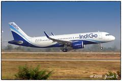 VT-ITA (Girish Bhagnari) Tags: vtita indigo 6e ifly airbus a320 neo vobl airside spotting