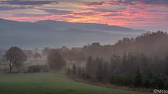 1__.jpg (Nu Mero) Tags: coucherdesoleil valléedevillé brouillard paysage brume leverdesoleil sunrise sunset dieffenbachauval grandest france fr