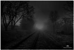 DECEMBER 2017  NGM_6674_3330-1-222 (Nick and Karen Munroe) Tags: fog fall foggy mist misty mistpatches fogpatches heavyfog canada beauty brampton beautiful blackandwhite bw blackwhite bandw monochrome mono nikon nickmunroe nickandkarenmunroe nature nickandkaren nikon2470f28 nick karenick23 karenick karenandnickmunroe karenmunroe karenandnick karen munroedesignsphotography munroedesigns munroephotography munroe landscape train traintracks rail railway railwaycrossing dark nightsky dawn daybreak ontario outdoors ontariocanada