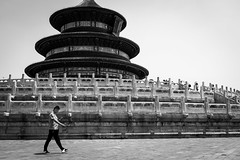 Hey Siri, where is the temple? (Go-tea 郭天) Tags: beijing temple heaven tourist touristic alone lonely history historical historic construction pavillon symbol wood wodden pavement busy walk walking candid phone mobile cell cellular cellphone network data connected connexion movement man reading read screen sun sunny hot warm shadow street urban city outside outdoor people bw bnw black white blackwhite blackandwhite monochrome naturallight natural light asia asian china chinese canon eos 100d 24mm prime ancient