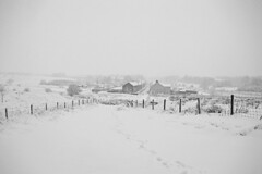 Winter wonderland (cmw_1965) Tags: snowscape snowing snowy winter wintry scene banwen wales cymru 2017 monochrome black white dulais valley valleys coal mining
