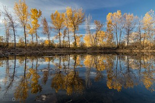 Autumn Reflections - Explored 11.12.17 (#84)