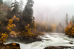 River in the Mist (Chatham Sound) Tags: canada britishcolumbia vancouverisland portalberni stampriver