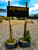Agropolis (Steve Taylor (Photography)) Tags: agropolis tyre sign black blue brown green