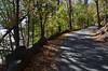 378 Roadway (Felton Davis) Tags: palisades njpalisades huylerslandingtrail thelongpath georgewashingtonbridge