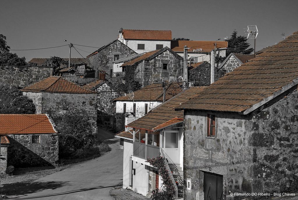 1600-covelaes (106)