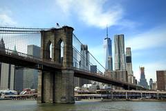 New York skyline (PeterCH51) Tags: usa us newyork ny newyorkcity nyc manhattan financialdistrict brooklynbridge skyline city cityscape highrisebuildings peterch51 explore explored inexplore america