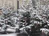 Christmas Market Weihnachtsmarkt Luxembourg Dec 2017 2 (symonmreynolds) Tags: christmasmarket weihnachtsmarkt snow luxembourgcity luxembourg december 2017