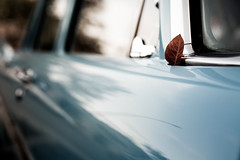 *** (Gabriela Tulian) Tags: autumn fall closeup part door industry car transportation automobile transport vehicle ideas vintage texture land concepts sales safety retail style detail design drive hard concept color automotive auto antique blue close retro side leaf