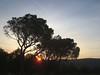 Svitanje - The sunrise (Hirike) Tags: postira brač dalmacija croatia hrvatska sunrise svitanje