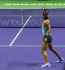 20171025-0I7A2044 (siddharthx) Tags: singapore sg simonahalep carolinegarcia elinasvitolina wtasingapore tennis womenstennis singaporeindoorstadium power grace elegance contest competition 1seed 4seed 6seed 8seed champions rally volley serve powerfulserves focus emotions sports wtatour porscheservesspeed bnpparibas stadium sport people wta winner sign crowd carolinewozniacki portrait actionshots frozenintime