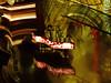 The Million Dollar Piano (BKHagar *Kim*) Tags: bkhagar eltonjohn sireltonjohn star musician legend lasvegas caesarspalace themilliondollarpiano piano stage music concert tickets nikon coolpix pointandshoot a900 reflection reflections