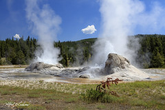 Double Boiler_27A0981 (Alfred J. Lockwood Photography) Tags: alfredjlockwood nature landscape grottogeyser eruption steam summer morning yellowstonenationalpark wyoming