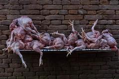 Bhaktapur, Népal (Pascale Jaquet & Olivier Noaillon) Tags: poulets détailmarchandises bhaktapur valléedekatmandou népal npl