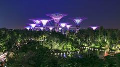 3/3 - One building, infinite views - #Singapore as seen by #ArturoNahum (Arturo Nahum) Tags: singapore singapur arturonahum cityscape arquitectura arquitecture 600
