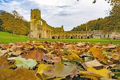 Fountains Abbey, Ripon, North Yorkshire (Kingsley_Allison) Tags: fountainsabbey northyorkshire nikon nikond7200 nationaltrust river ripon abbey harrogate historical historic monks worldheritage studleyroyal