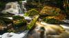 Roller Coaster [Explored to #118] (Kurt Miller) Tags: elekalafalls westvirginia autumn fall falls leaves longexposure water waterfall whoosh