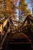 Footbridge, Bruar Forest (Briantc) Tags: scotland perthshire perthandkinross pitlochry bruar forest bridge footbridge timber
