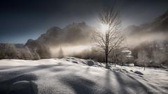 First snow (reneschaedler) Tags: beautiful glittering glitzer sonnenaufgang wow glarus schnee alpen schweiz nebelmeer nebel misty foggy mountains alps sunrise morning schaedler rene d750 nikon switzerland november winter snow sundaylights landscape