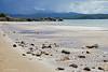 The Beach (♥ Annieta  off/on) Tags: annieta juli 2017 sony a6000 holiday vakantie england scotland uk greatbritain allrightsreserved usingthispicturewithoutpermissionisillegal kust coast zee sea sand zand view strand