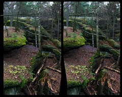 Boulder maze 3-D / CrossEye / Stereoscopy / HDR / Raw (Stereotron) Tags: saxony sachsen saxonswitzerland sandstone mountains nationalpark sächsischeschweiz felsen rocks labyrinth königstein forest woods outback backcountry wilderness europe germany crosseye crosseyed crossview xview cross eye pair freeview sidebyside sbs kreuzblick 3d 3dphoto 3dstereo 3rddimension spatial stereo stereo3d stereophoto stereophotography stereoscopic stereoscopy stereotron threedimensional stereoview stereophotomaker stereophotograph 3dpicture 3dglasses 3dimage sony alpha singlelens tonemapping hdr hdri raw availablelight 100v10f