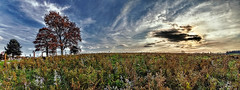 IMG_1894-97Ptzl1scTBbLGER (ultravivid imaging) Tags: ultravividimaging ultra vivid imaging ultravivid colorful canon canon5dmk2 clouds autumn autumncolors fall fields farm landscape lateafternoon sunsetclouds trees twilight flowers field scenic sky sunset