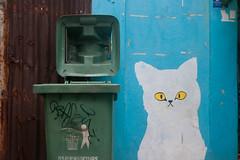 IMG_5154 (serheyshulgin) Tags: cat whitecat streetart wall graffiti trashcan thailand bangkok