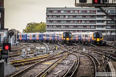 LondonWaterlooRailStation2017.10.31-51 (Robert Mann MA Photography) Tags: londonwaterloorailstation londonwaterloostation londonwaterloo waterloorailstation waterloostation waterloo lambeth londonboroughoflambeth london greaterlondon station trainstation trainstations railwaystation railstation railwaystations railstations railway railways architecture train trains city centre cities londoncitycentre 2017 tuesday autumn 31stoctober2017 networkrail networkrailwaterloo southwesttrains southwesternrailway class450 desiro class450desiro class444 class444desiro class707 desirocity class707desirocity class458 juniper class458juniper class455 class456 class159 southwesternturbo class159southwesternturbo