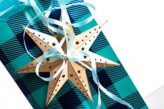 Star (Karen_Chappell) Tags: gift present package noel xmas holiday wrapping ornament star gold blue white stilllife christmas decor decoration ribbon wrap