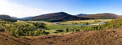Mar Lodge Estate 19 September 2017 360.jpg (JamesPDeans.co.uk) Tags: riverdee valley season landscape autumn plants gb greatbritain mountains industry colour prints for sale purple heather nature hills unitedkingdom transporttransportinfrastructure digital downloads licence scotland britain deeside water wwwjamespdeanscouk river aberdeenshire man who has everything landscapeforwalls europe uk james p deans photography digitaldownloadsforlicence jamespdeansphotography printsforsale forthemanwhohaseverything