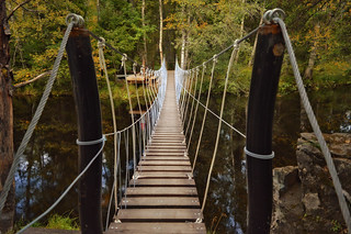 Bridge / Suspension footbridge