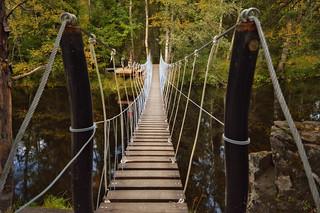 Bridge / Suspension footbridge