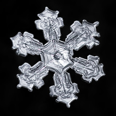 Snowflake-a-Day No. 5 (Don Komarechka) Tags: snowflake snow flake ice crystal nature symmetry fractal focusstacking science physics reflectedlight frozen winter six