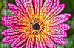Hexaflora (FotoGrazio) Tags: botany waynegrazio waynesgrazio abstract art botanical closeup colorful cube cubes cubism daisy digitalphotography fineart fotograzio nature painterly phototoart phototopainting plant psychodelic saturated surreal surrealism texture trippy