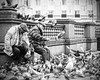 feeding the birds, leeds 2017 (matthewheptinstall) Tags: leeds men oldmen classical streetphotography pigeons street citylife nature uk england feedthebirds feeding birds portrait