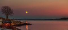 Evening at Rødstein (Kurt Evensen) Tags: norway sea landscape tree reflection luna water tønsberg sky moon seascape weather vestfold shore