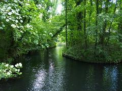 View from bridge - Ekenstein (Henk van der Eijk) Tags: ekenstein lucaspietersroodbaard willemalberdavanekenstein tjamsweer groningen