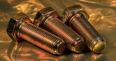 Tone (wwwwg) Tags: rhyming zone bolts gold foil macromondays