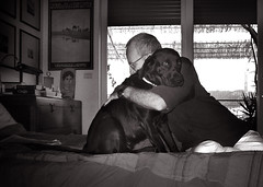 Unspoken love (dangeri.away) Tags: bo blacklabrador female bw blackandwhiteportrait mywilddarling quietandfearful athome husband sharing amomenttogether feelingswithoutword nonverbalemotions sensitivity love betweenus littledoglaughednoiret