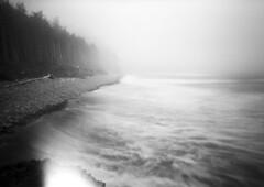 These are the days (Zeb Andrews) Tags: zeroimage6x9 film oregoncoast oregon pinhole lensless blackwhite monochrome capelookout pacificnorthwest pacificocean landscape lofi longexposure ocean surf