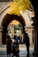 The University of Tokyo (Yoshixjr1977) Tags: ilce9 sony a9 α9 sel70200g tokyo university bunkyo